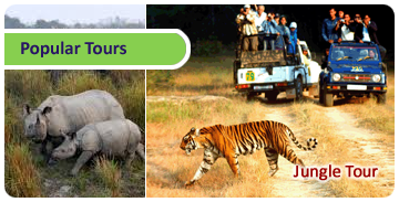 Click here for Popular Tours